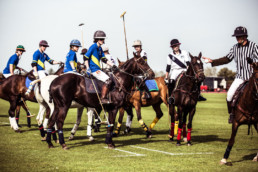 Kirtlington Park Polo School - Press