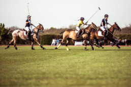 Kirtlington Park Polo School - Services